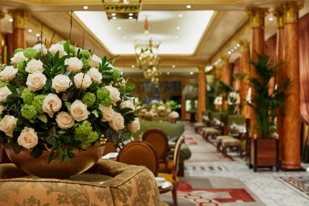 Roses on display in The Promenade; Courtesy The Dorchester