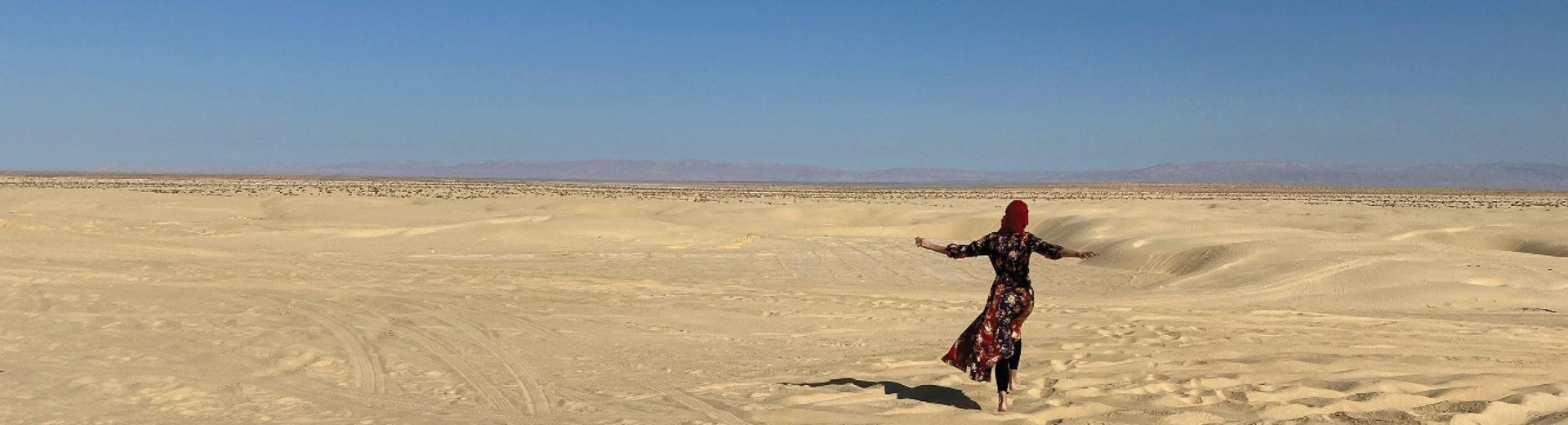 Tunisia Dunes