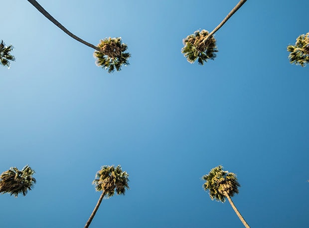 Top Tables LA: 33 Great Restaurants in Los Angeles