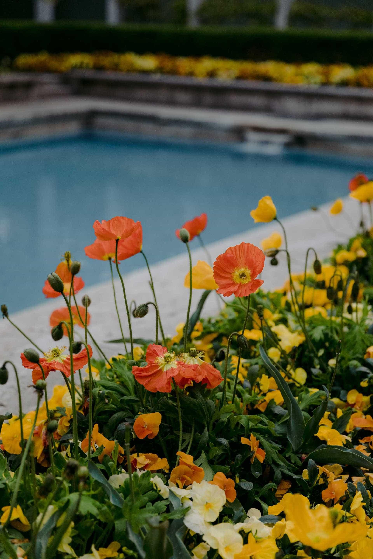 villa necchi campiglio flowers