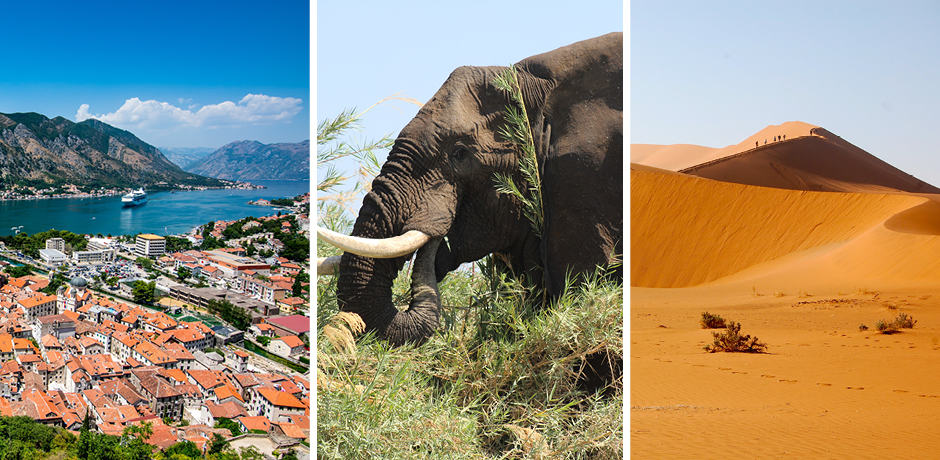 A view of the rooftops in Montenegro, Courtesy Faruk Kaymak; an elephant in Zimbabwe, Courtesy Indagare; hiking atop the Sossusvlei dunes in Namib Desert in Namibia, Courtesy Indagare.