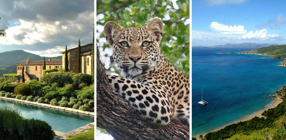 From left: Photo courtesy Castello di Reschio; A cheetah on safari in Botswana, Photo by Rose Allen; Peter Island in the British Virgin Islands, Photo by Marley Blandori.