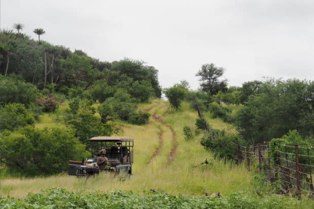 Kruger National Park, South Africa. Photo by Indagare's Rose Allen.