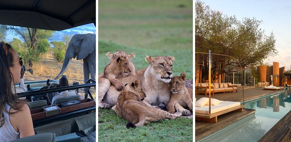 On safari in Tanzania, Botswana and South Africa