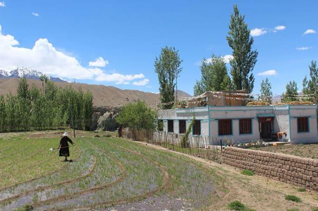 A local in Ladakh