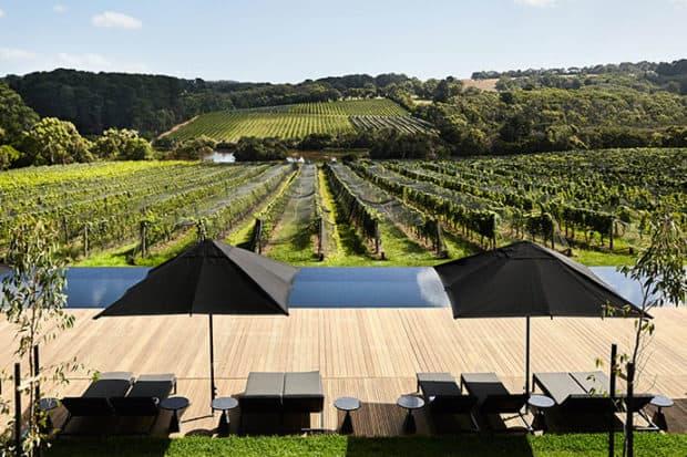 Australia's Mornington Peninsula: The Next Big Wine Region