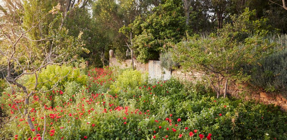 The gardens of Rohuna, outside Tangier. Photo by  Ngoc Minh Ngo