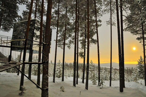 The Treehotel's Mirrocube. Photo by Lola Akinmade Åkerström courtesy Visit Sweden.