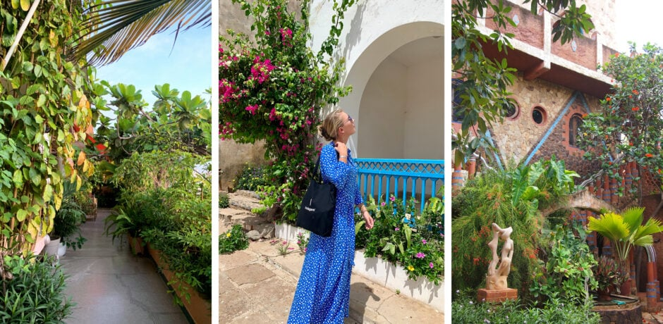 Greenery in Senegal (from left: The terrace at OH Gallery in Dakar; Elizabeth Harvey on Gorée Island; the patio at Espace Sobo-Badé). Photos by Elizabeth Harvey and Iva Therene