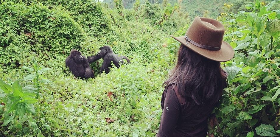 Gorilla-trekking in Volcanoes National Park in northwestern Rwanda