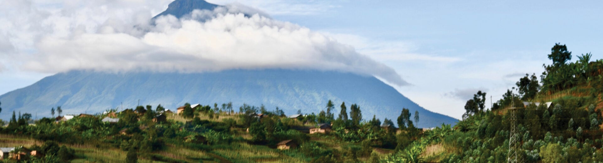 Rwanda Gorilla Trekking in Virunga