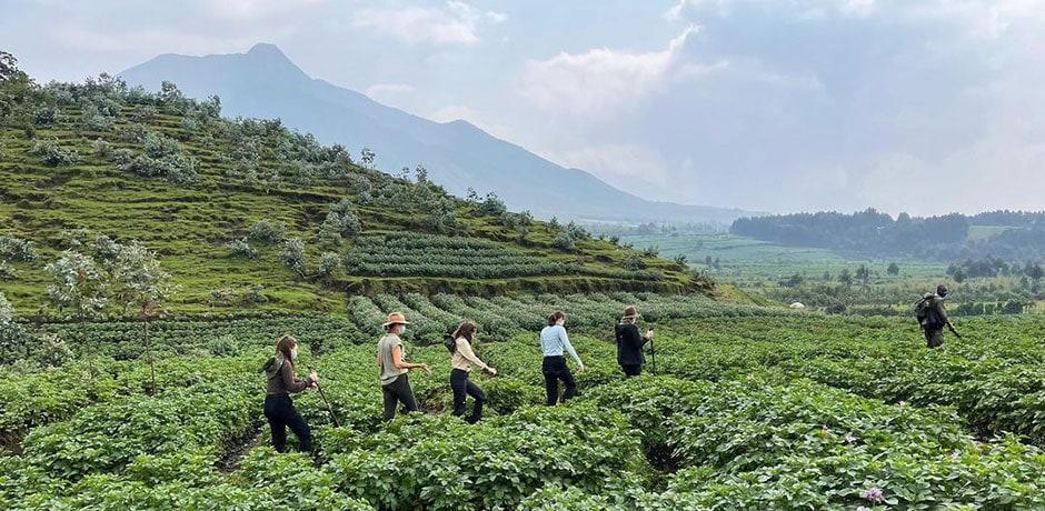 Members of the Indagare team hiking in Rwanda