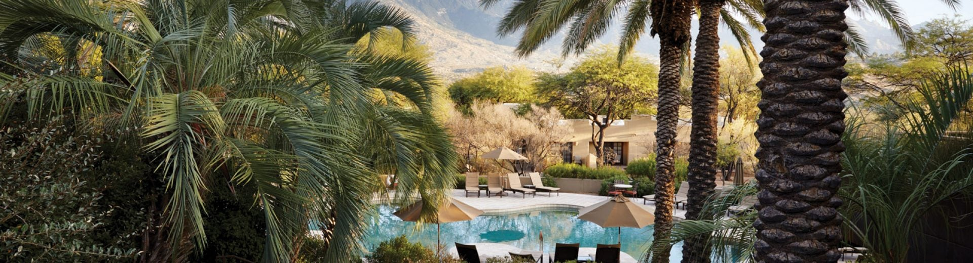 Miraval Arizona Pool view