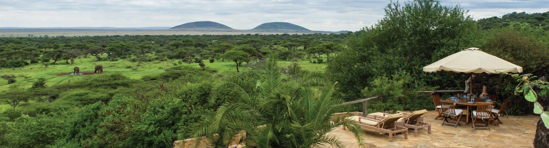 Kenya elephant safari ol donyo