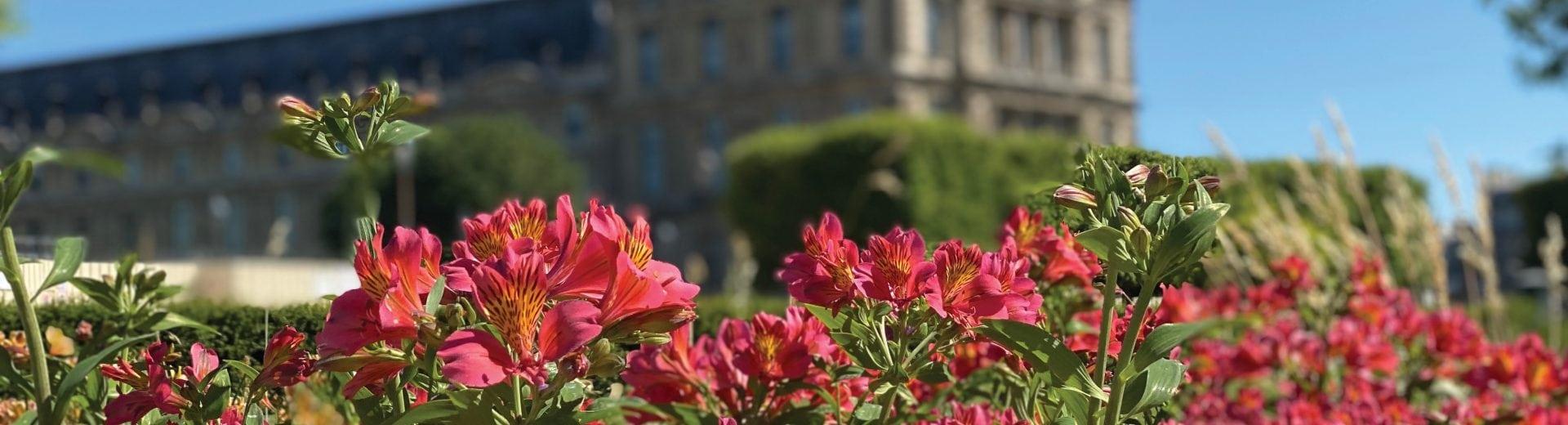 French Gardens Insider Journey Hero