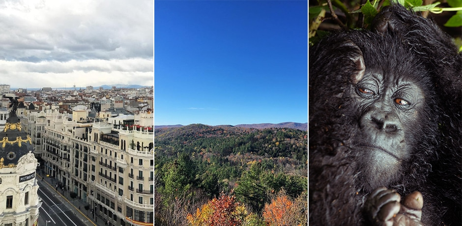 From left: Madrid, Vermont, Rwanda. Courtesy Indagare