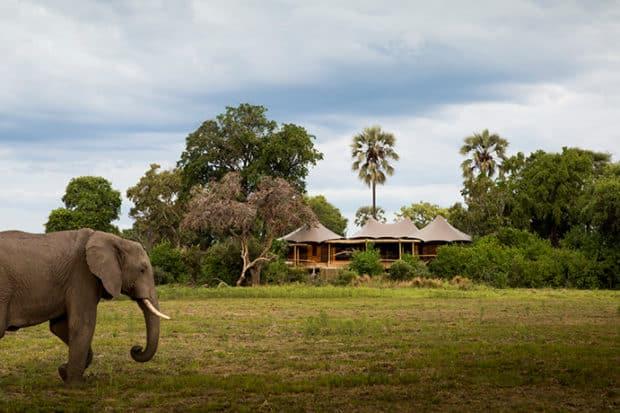 A Legendary Safari Camp is Back in Botswana