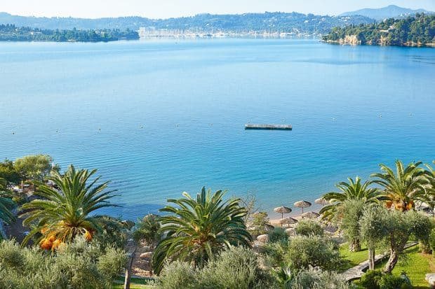 Shoreline with palm trees on the Greek island of Corfu in the Ionian Sea