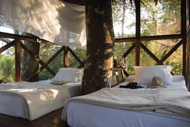 Treehouse at Inkaterra Reserva Amazonica