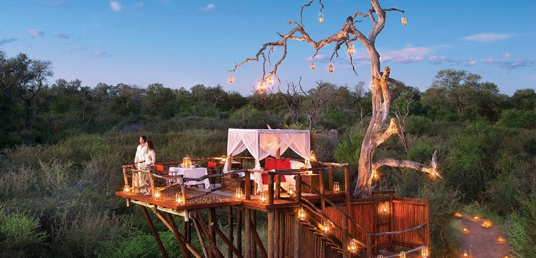 Romantic South Africa-LP