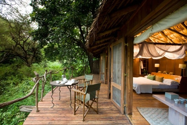A suite at Lake Manyara Tree Lodge
