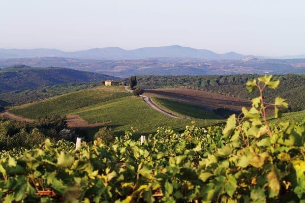 Green landscape around Rosewood Castiglion del Bosco in Tuscany