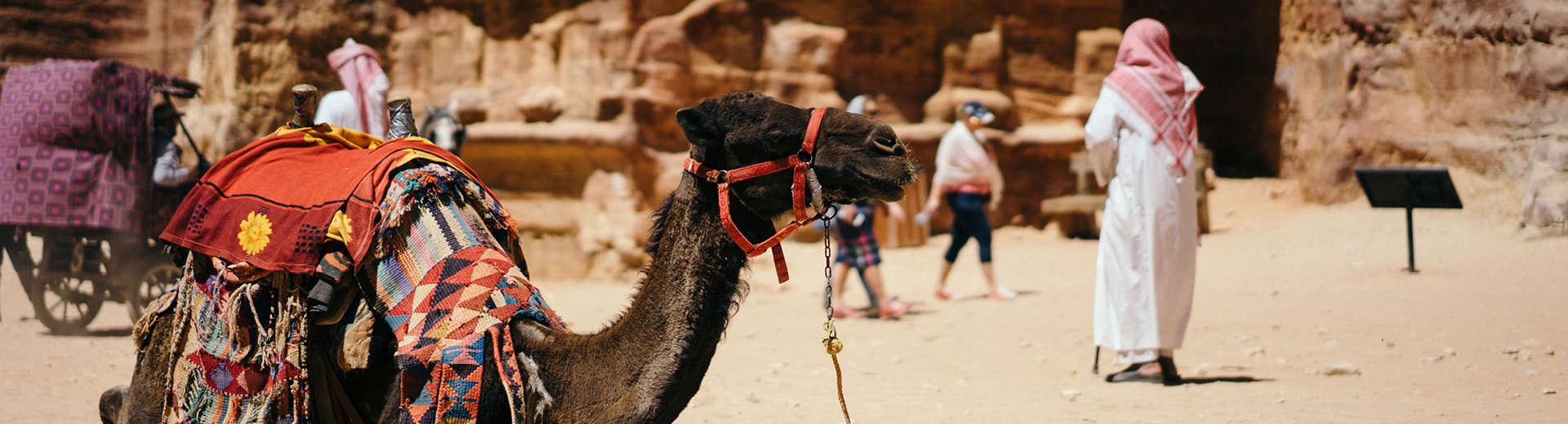 indagare insider journeys treasures of egypt