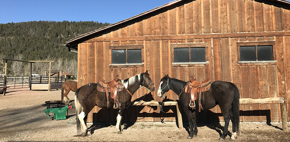 The Ranch at Rock Creek offers plentiful activities, including horseback-riding, which is available in the fall, spring and summer.