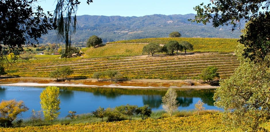 Beautiful views from Quintessa vineyard overlooking Napa's countryside