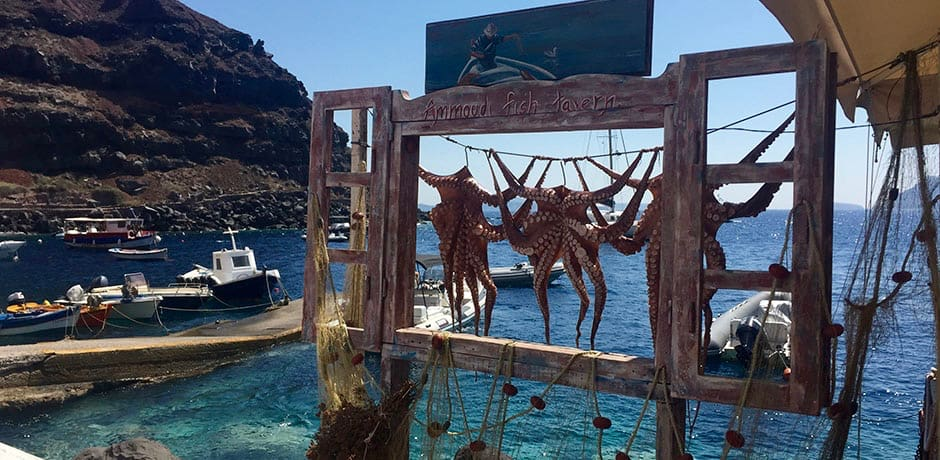 Freshly caught octopus hanging to dry in Amoudi Bay.