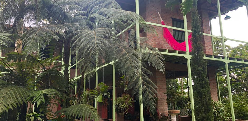 This restored farmhouse is now one of the largest orchid farms in the coffee region.