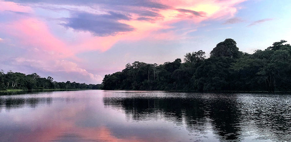 The Amazon is 4,000 miles long. According to a recent Nat Geo survey, it is 100 miles longer than the Nile and its delta is 200 miles wide at one point with an island the size of New Zealand in it. The whole basin is comparable in size to 90 percent of the US.