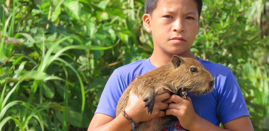 Capybara, the world's largest rodent, can grow to 60 pounds. This one is only three months old and will probably be a pet until it is big enough to sell or slaughter for its meat, which is apparently very low in cholesterol.
