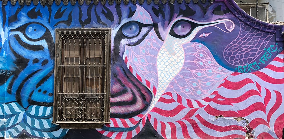 Street art in the Barranco district. (photo by Marina Purcell)