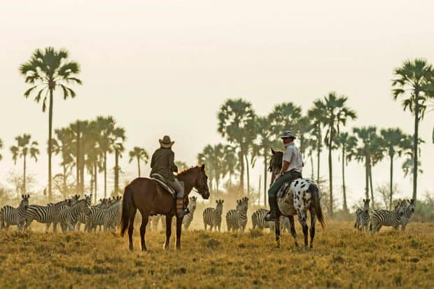 Immersive trips like a Botswana safari give solo travelers the opportunity to learn from local guides (courtesy Uncharted Africa)