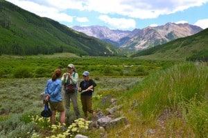 Aspen Center for Environmental Studies (ACES)
