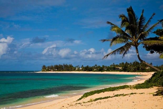 Oahu beachfront, Courtesy Oahu Tourism Board