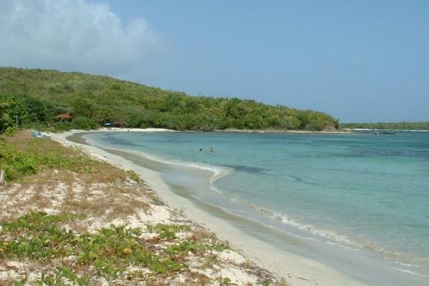 Courtesy Vieques National Wildlife Refuge
