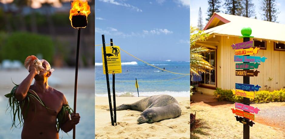 Courtesy Hawaii Tourism Authority, Tor Johnson, Robert Coello, Dana Edmunds